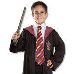 Harry Potter Fancy Dress Bromsgrove